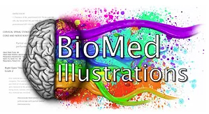 BioMed Illustrations